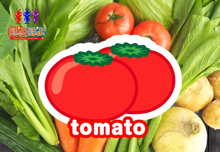 今日の英語!英語で野菜の名前を覚えてみよう!①