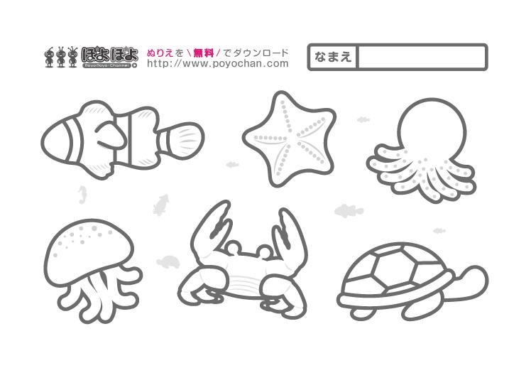 海の生き物(魚・ヒトデ・カメ・タコ・カニ・クラゲ)の無料塗り絵