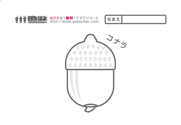 無料塗り絵_秋のどんぐり(コナラ)
