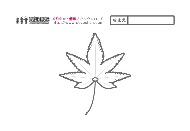無料塗り絵_秋のもみじ