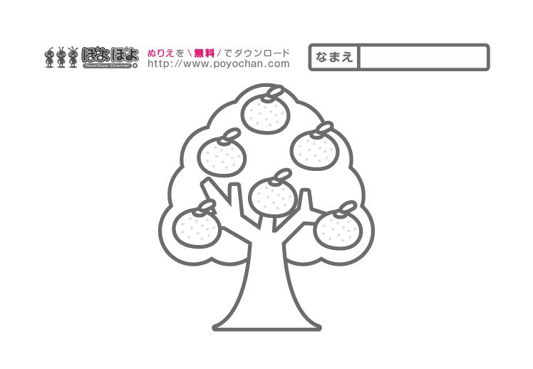 簡単無料塗り絵 みかんの木
