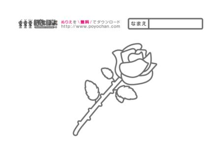 5月の花 無料塗り絵 バラ(母の日)