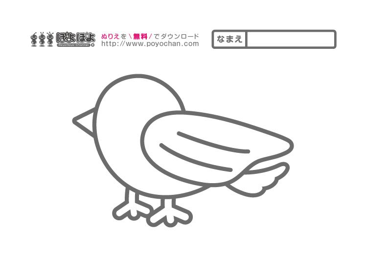 無料塗り絵|鳥