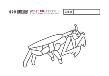 昆虫の無料塗り絵カマキリ