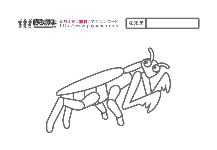 昆虫の無料塗り絵|カマキリ
