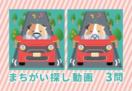 まちがい探しクイズ|モルモットが車を運転|高齢者レクリエーション・リハビリ